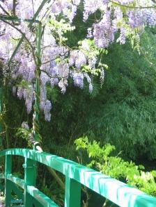 From the Japanese bridge