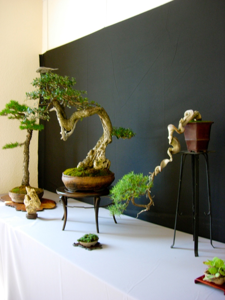 Sculpted trees!